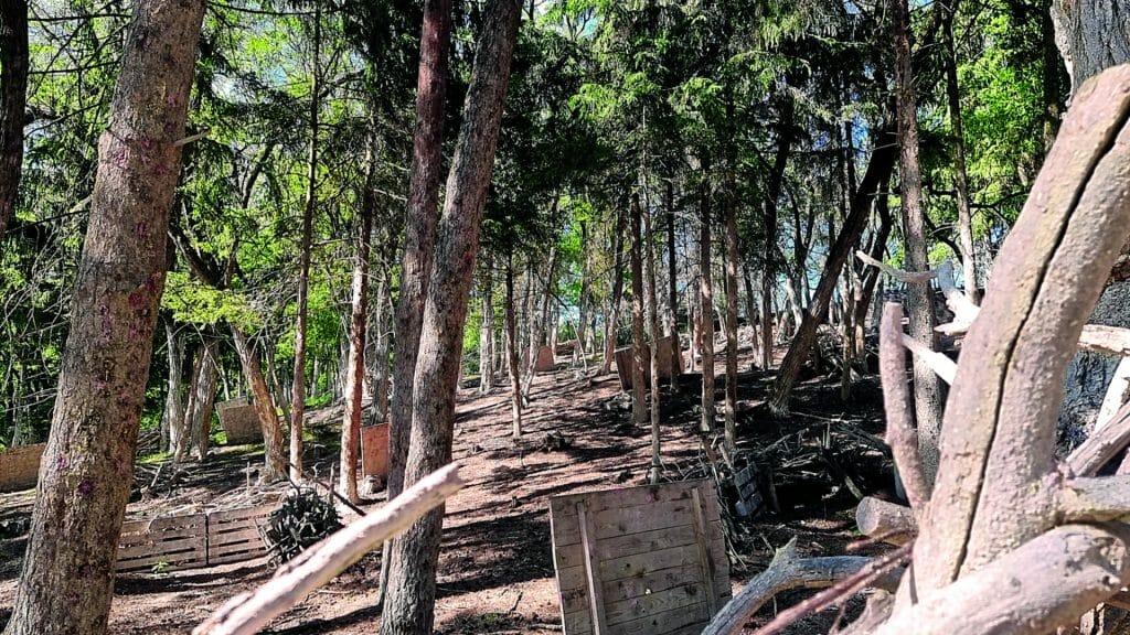 004 image woodland road 1920-1080 2021