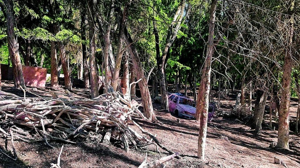 009 image woodland road 1920-1080 2021