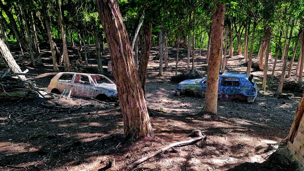 010 image woodland road 1920-1080 2021