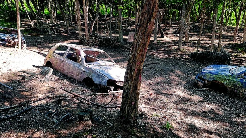 012 image woodland road 1920-1080 2021