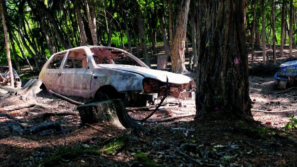 013 image woodland road 1920-1080 2021