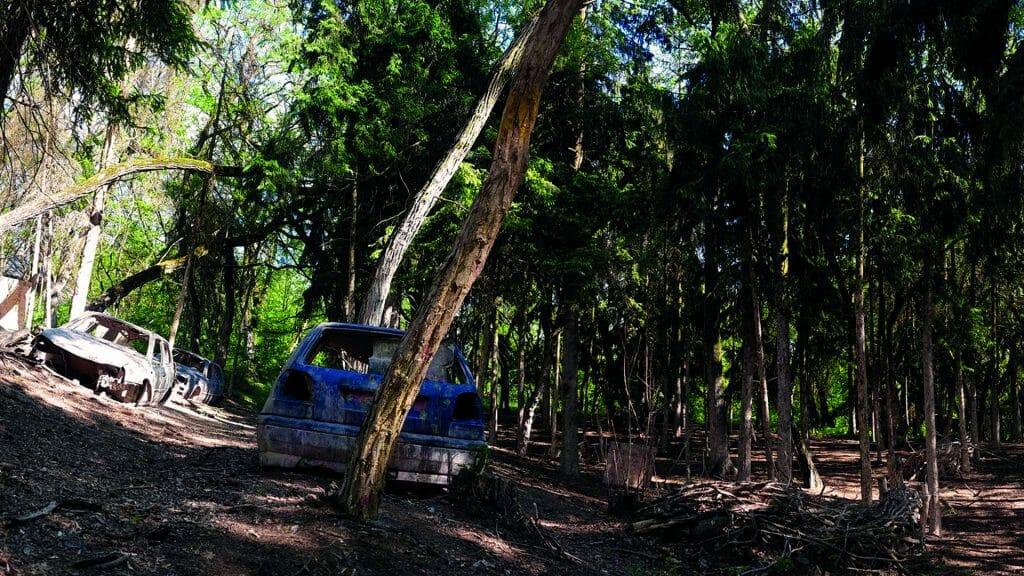 015 image woodland road 1920-1080 2021